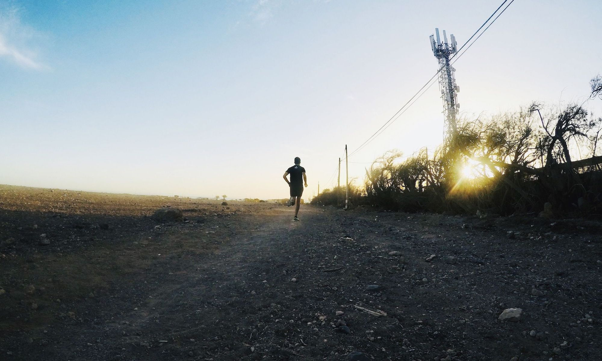 entrenador personal online running carrera